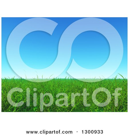 Clipart of a 3d Background of Green Grass Under Blue Sky - Royalty Free Illustration by KJ Pargeter