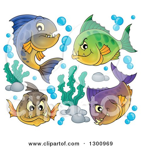 Clipart of a Group of Carnivorous Piranha Fish with Bubbles and Aquatic Plants - Royalty Free Vector Illustration by visekart