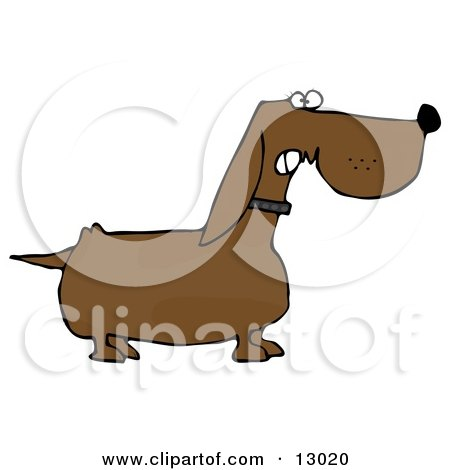 Mean Aggressive Dachshund Dog Growling Clipart Illustration by djart