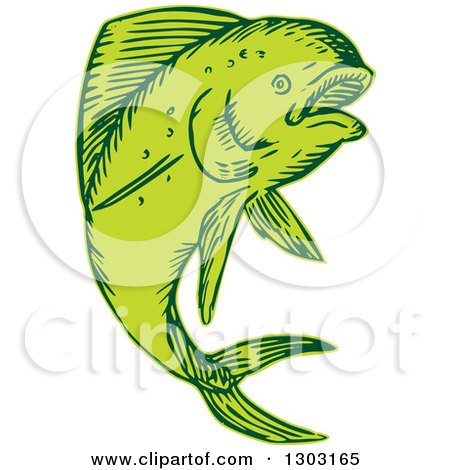 Clipart of a Sketched or Engraved Jumping Dolphin Fish - Royalty Free Vector Illustration by patrimonio