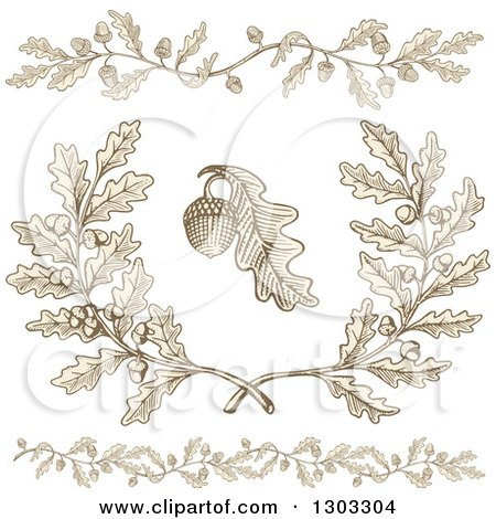Clipart of Engraved Acorn and Oak Leaf Design Elements - Royalty Free Vector Illustration by Any Vector