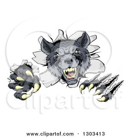 Clipart of a Ferocious Gray Wolf Slashing and Breaking Through a Wall - Royalty Free Vector Illustration by AtStockIllustration