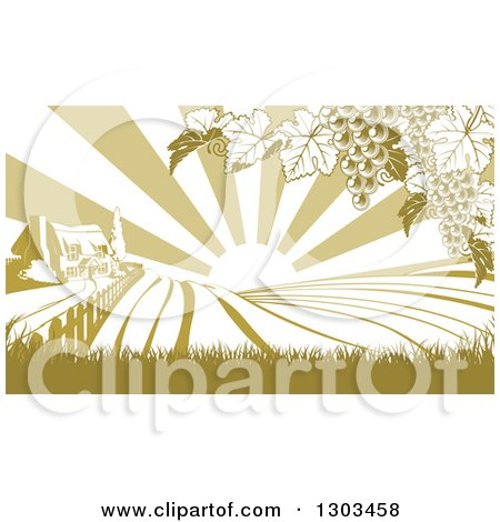 Clipart of a Winery Cottage Farm House and Rolling Hills with Vineyard Grape Vines and Sun Rays in Green and White - Royalty Free Vector Illustration by AtStockIllustration