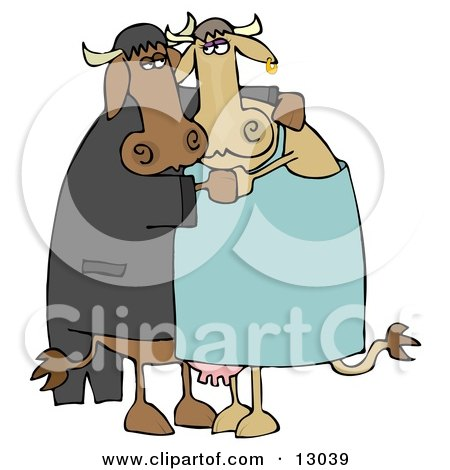 Cute Loving Cow Couple Dancing Together Clipart Illustration by djart