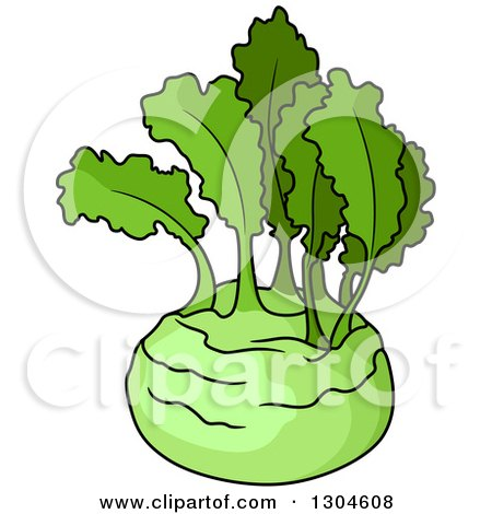 Clipart of a Lush Green Kohlrabi - Royalty Free Vector Illustration by Vector Tradition SM