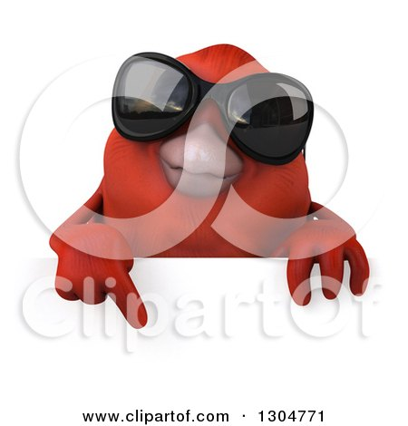 Clipart of a 3d Red Bird Wearing Sunglasses and Pointing down over a Sign - Royalty Free Illustration by Julos