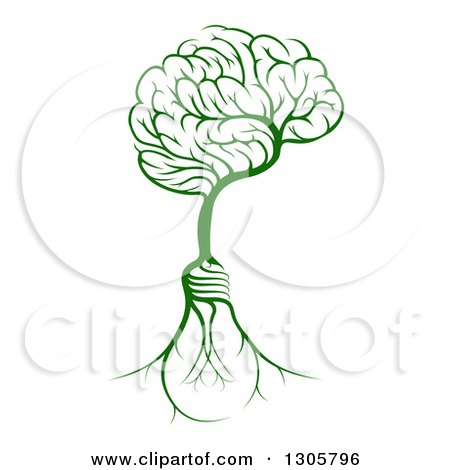 Clipart of a Green Tree with Electric Light Bulb Roots and a Brain Canopy - Royalty Free Vector Illustration by AtStockIllustration