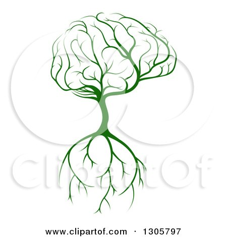 Clipart of a Green Tree with a Big Brain Canopy and Roots - Royalty Free Vector Illustration by AtStockIllustration
