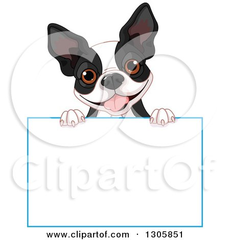 Clipart of a Cute Boston Terrier or French Bulldog Looking over a Blank Sign - Royalty Free Vector Illustration by Pushkin