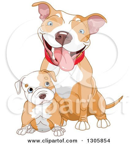 Clipart of a Cute Blue Eyed White Ad Tan Pitbull Puppy Dog Sitting in Front of Its Mom - Royalty Free Vector Illustration by Pushkin