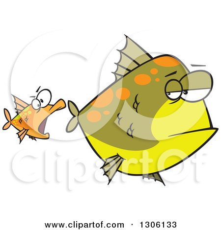 Clipart of a Cartoon Unamused Big Green Fish Looking Back at an Optimistic Orange Fish Trying to Attack - Royalty Free Vector Illustration by toonaday