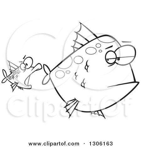 Lineart Clipart of a Cartoon Black and White Unamused Big Fish Looking Back at an Optimistic Fish Trying to Attack - Royalty Free Outline Vector Illustration by toonaday