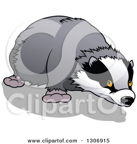 Clipart of a Cartoon Sniffing Honey Badger - Royalty Free Vector Illustration by dero