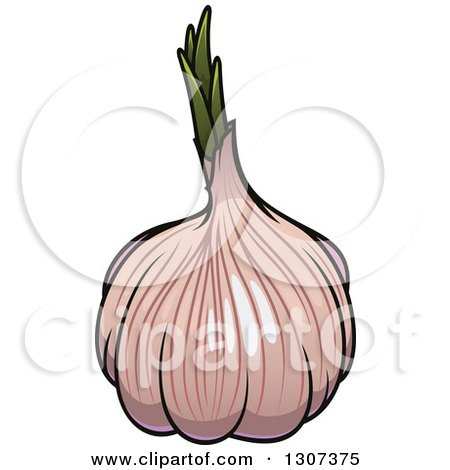 Clipart of a Cartoon Pink Garlic Bulb - Royalty Free ...