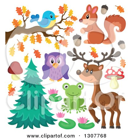 Clipart of a Cute Forest Blue Bird on an Autumn Branch, Squirrel, Deer, Owl, Frog and Plants - Royalty Free Vector Illustration by visekart