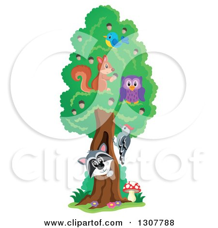 Clipart of a Happy Raccoon Peeking out Through a Tree Hollow, with Birds, an Owl and Squirrel - Royalty Free Vector Illustration by visekart