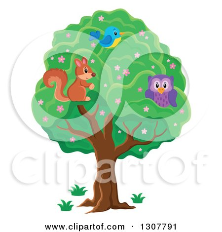 Clipart of a Cute Forest Squirrel Owl and Blue Bird in a Tree - Royalty Free Vector Illustration by visekart