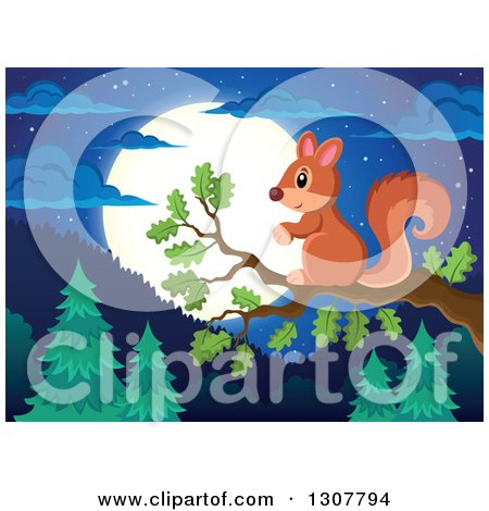 Clipart of a Cute Forest Squirrel on a Tree Branch over a Forest at Night - Royalty Free Vector Illustration by visekart