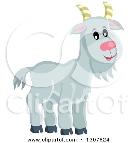 Clipart of a Cute Gray Goat Farm Animal - Royalty Free Vector Illustration by visekart