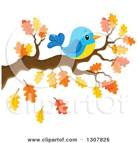 Clipart of a Chubby Blue and Yellow Bird Resting on an Autumn Oak Branch - Royalty Free Vector Illustration by visekart
