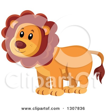 Clipart of a Wild African Male Lion - Royalty Free Vector Illustration by visekart