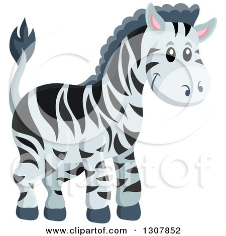 Clipart of a Cute Wild African Zebra - Royalty Free Vector Illustration by visekart