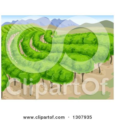 Clipart of a Vineyard Background with Mountains and Vines - Royalty Free Vector Illustration by BNP Design Studio