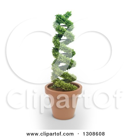 Clipart of a 3d DNA Double Helix Plant Shrub in a Terra Cotta Pot, on a White Background - Royalty Free Illustration by Mopic