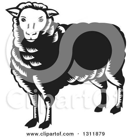 Clipart of a Retro Black and White Woodcut Sheep - Royalty Free Vector Illustration by patrimonio