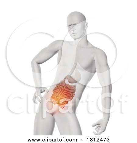 Clipart of a 3d Medical Anatomical Male with Visible Glowing Guts, on White - Royalty Free Illustration by KJ Pargeter