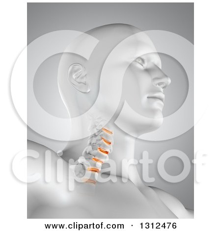 Clipart of a 3d Medical Anatomical Male with Visible Neck Vertibrae, on Gray - Royalty Free Illustration by KJ Pargeter