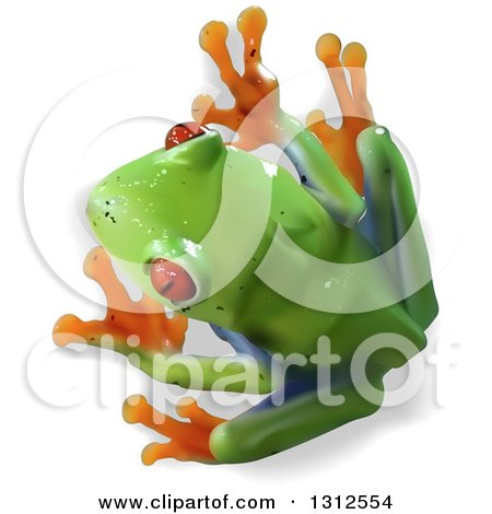 Clipart of an Aerial View of a 3d Cute Red Eyed Tree Frog - Royalty Free Vector Illustration by dero
