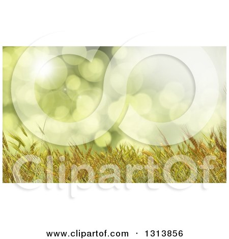 Clipart of a 3d Golden Wheat Crop Background over Green Flares - Royalty Free Illustration by KJ Pargeter