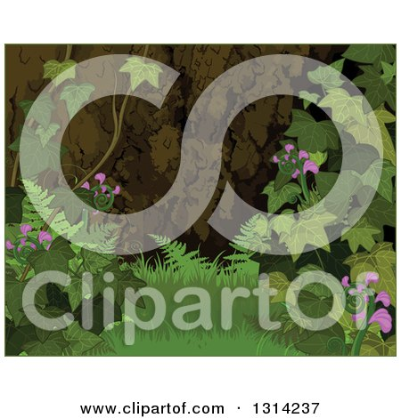 Clipart of a Nature Background of a Forest Floor with Grass, Ivy, Flowers and Ferns with a Thin Green Border - Royalty Free Vector Illustration by Pushkin
