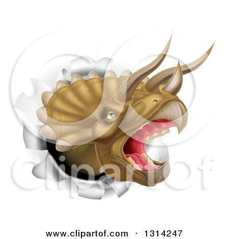 Clipart of a 3d Roaring Angry Triceratops Dino Head Breaking Through a Wall - Royalty Free Vector Illustration by AtStockIllustration