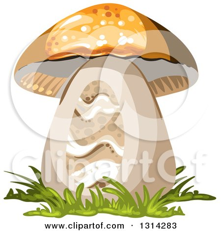 Clipart of a Mushroom with Grass - Royalty Free Vector Illustration by merlinul