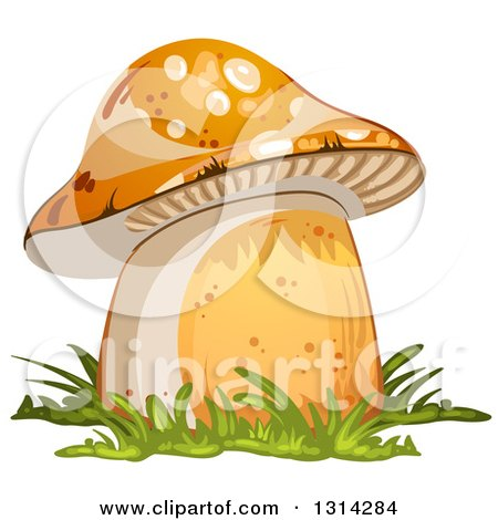 Clipart of a Mushroom with Grass 2 - Royalty Free Vector Illustration by merlinul