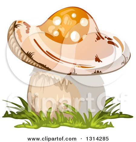 Clipart of a Mushroom with Grass 3 - Royalty Free Vector Illustration by merlinul