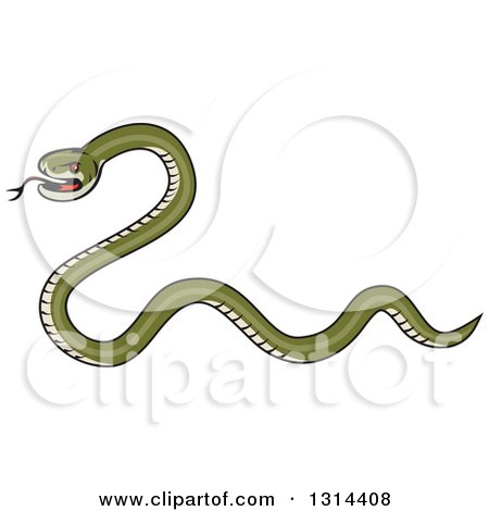 Clipart of a Cartoon Green Snake Facing Left - Royalty Free Vector Illustration by patrimonio