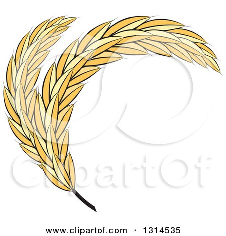 Clipart of Curved Wheat Stalks - Royalty Free Vector Illustration by Lal Perera
