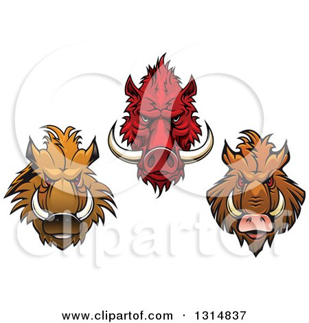 Clipart of Red and Brown Vicious Razorback Boar Mascot Heads - Royalty Free Vector Illustration by Vector Tradition SM