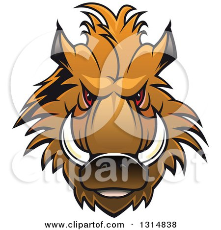 Clipart of a Brown Vicious Razorback Boar Mascot Head 2 - Royalty Free Vector Illustration by Vector Tradition SM
