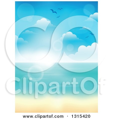 Clipart of a Blurred Tropical Beach with White Sands and the Horizon over the Ocean, with Seagulls, Clouds and Flares - Royalty Free Vector Illustration by visekart