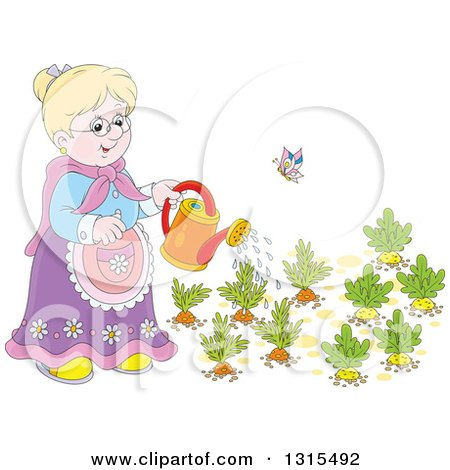 Clipart of a Cartoon Blond White Granny Watering a Carrot and Turnip Garden - Royalty Free Vector Illustration by Alex Bannykh