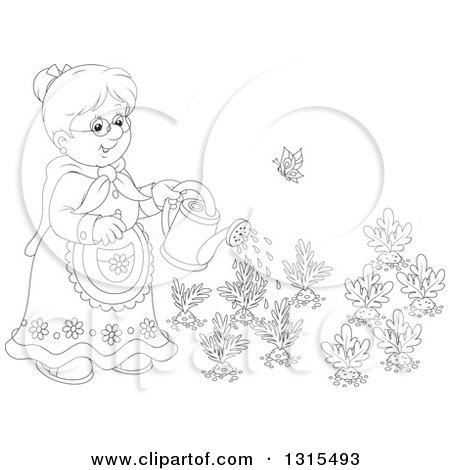 Clipart of a Cartoon Black and White Granny Watering a Carrot and Turnip Garden - Royalty Free Vector Illustration by Alex Bannykh