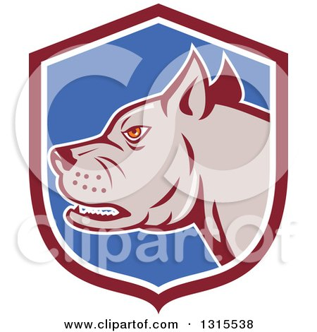 Clipart of a Cartoon Growling Pitbull Guard Dog in a Maroon White and Blue Shield - Royalty Free Vector Illustration by patrimonio