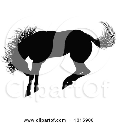 Clipart of a Black Silhouetted Horse Bucking - Royalty Free Vector Illustration by AtStockIllustration