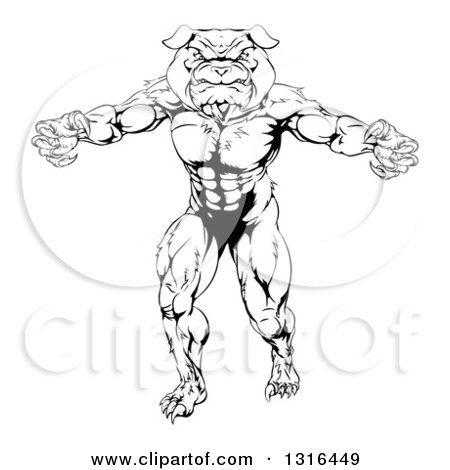 Clipart of a Black and White Tough Muscular Bulldog Man Mascot Standing Upright - Royalty Free Vector Illustration by AtStockIllustration