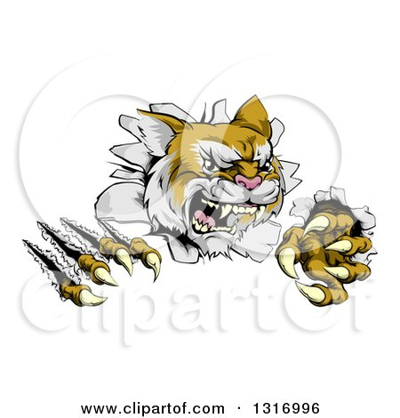 Clipart of a Vicious Wild Cat Slashing Through a Wall - Royalty Free Vector Illustration by AtStockIllustration