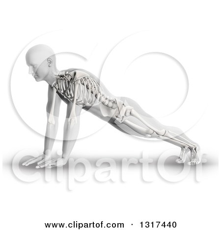 Clipart of a 3d Anatomical Man in a Push up or Yoga Pose, with Visible Skeleton, on White - Royalty Free Illustration by KJ Pargeter